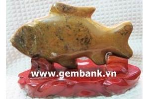 Cá chép Canxedone 2,2kg